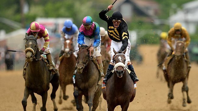 Oxbow, ridden by Gary Stevens, leads the field to the finish line to win the 138th running of the Preakness Stakes at Pimlico in Baltimore. Picture: Patrick Smith