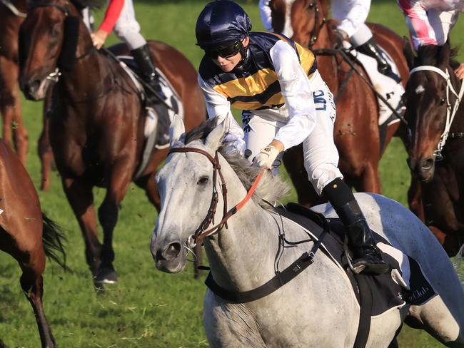 Kathy O'Hara and Grey Lion combine to win the Lord Mayors Cup.