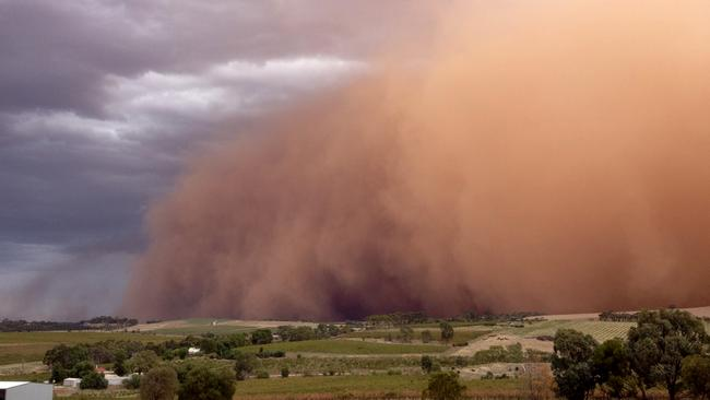 The dust storm seen from Seppeltsfield in the Barossa. Picture: Travis Earth Wines