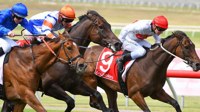 Hey Doc (orange cap) ran third at Sandown on Saturday in his return to the track after 14 months. Picture: AAP