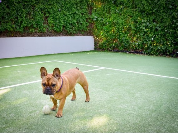 Game, set and match: these luxury homes have what it takes to court the world's best tennis players. Picture: Supplied