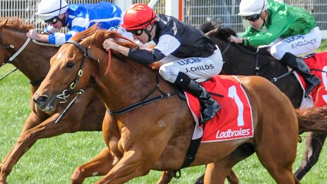 Written By will resume in the WJ Adams Stakes at Caulfield. Picture: Getty Images