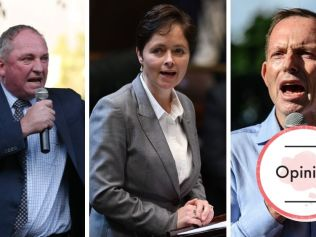 Barnaby Joyce, Tanya Davies and Tony Abbott have actively opposed the bill. Image: AAP Image/James Gourley, David Swift, AAP Image/Joel Carrett.