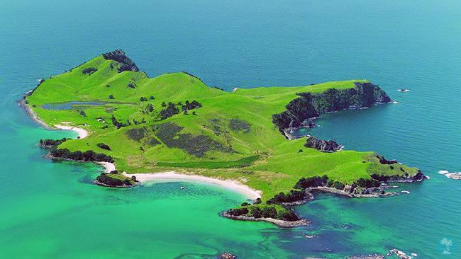 Slipper Island, NZ.