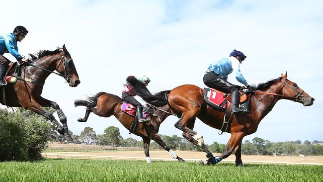 Spying On You (left, Tom Ryan) chases home Pentomatic (middle, Martin Kelly) and Aldous (Steven Pateman) at the Oakbank trials. Picture: Tait Schmaal