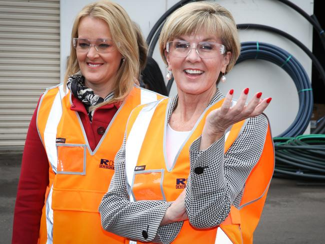 Ms Bishop, pictured with Lindsay MP Fiona Scott, has rolled up her sleeves for a long campaign. Picture: Renee Nowytarger