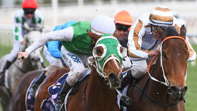 Assertive Approach (right) beaten by The Inevitable. Picture: AAP Image/Vince Caligiuri