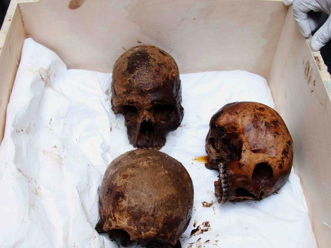 Skulls of the three decomposed mummies found inside the mysteriously large coffin. Picture: EPA