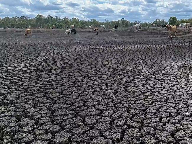 Australia is struggling through a severe drought.