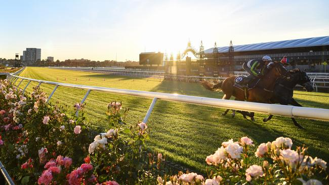 Horses during a trackwork session at Flemington Racecourse. Picture: Vince Caligiuri/AAP