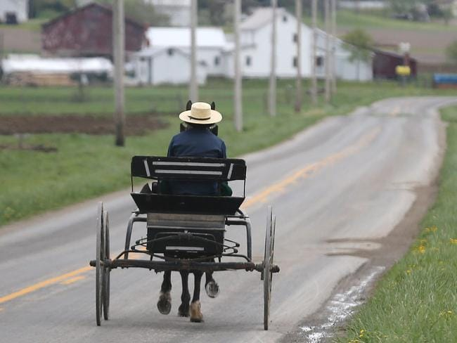 The Swartzentruber Amish fought Pennsylvania state law in court to resist orange reflective triangles on their buggies which were 'too worldly'. Picture: Phil Masturzo.