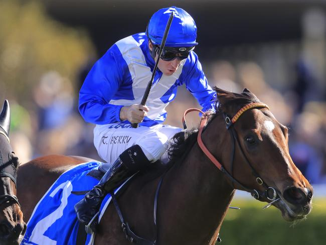 Tommy Berry on Libertini winning the Furious Stakes at Randwick. Picture: Getty Images