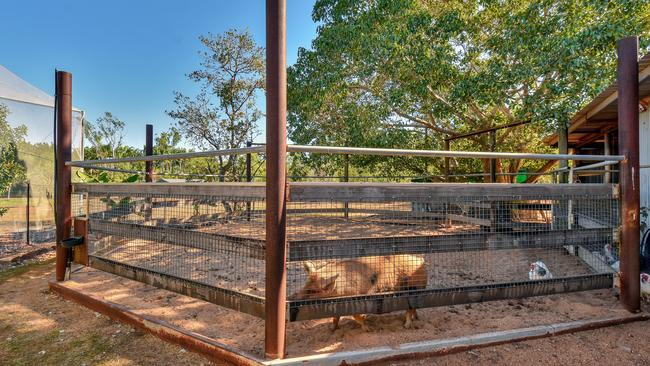 Space for pigs too! Picture: LJ HOOKER
