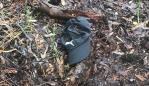 The missing backpacker's family believe the hat belongs to Theo Hayez.