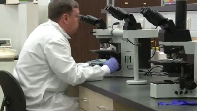 Study ... Microbiologist John Golobic, of Quest Diagnostics, during the research. Picture: YouTube/Vuz TV