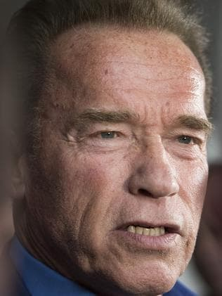 Schwarzenegger has landed. Picture: Ellen Smith/AAP