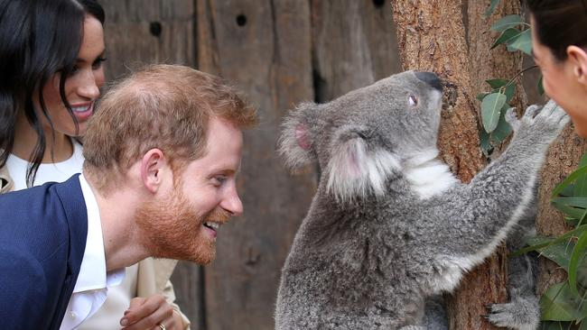 Prince Harry getting up close and personal!