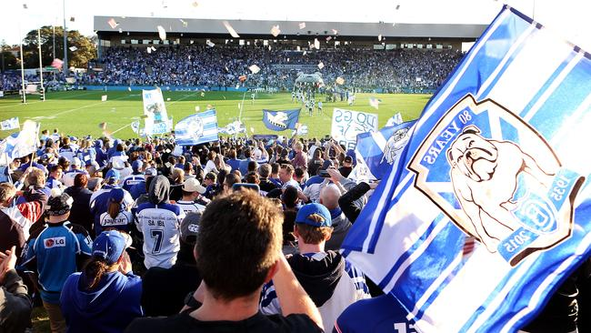 Bulldogs fans at Belmore Sports Ground.