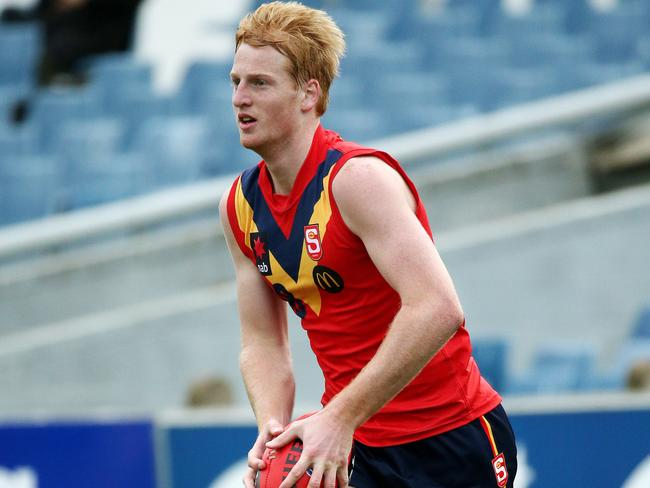 Aaron Francis in action for South Australia. Picture: Colleen Petch.