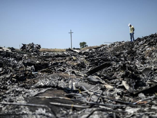 Looking for answers ... a man stands at the crash site of the Malaysia Airlines Flight MH17 near the village of Hrabove (Grabove), in the Donetsk region. Picture: Bulent Kilic
