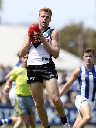 Willem Drew could help solve our forward line rookie issues. Picture: Sarah Reed.