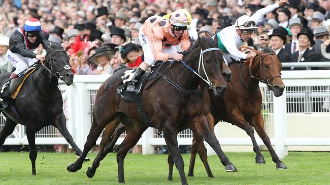 Black Caviar, ridden by Luke Nolen, wins the Diamond Jubilee Stakes by a nose at Royal Ascot.