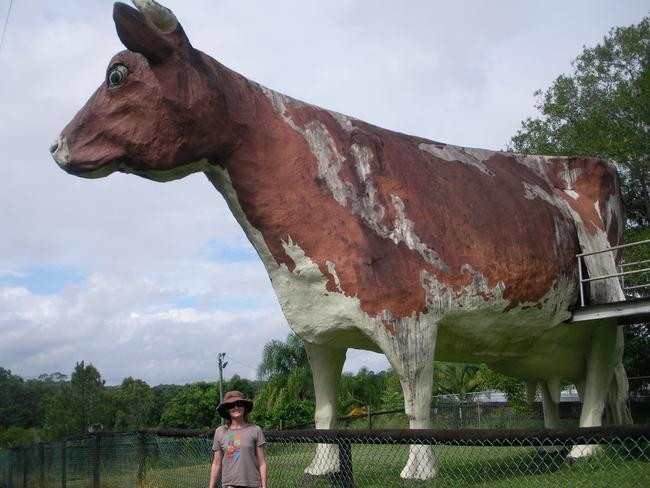 A landmark, such as the Big Cow in Nambour, Queensland, could draw more people to Wentworthville.