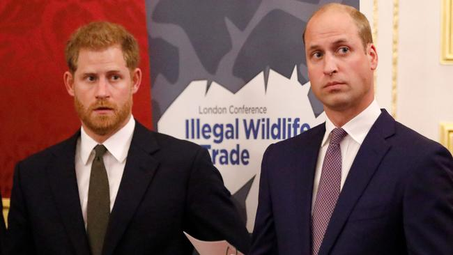 Prince Harry and Prince William have carved out their own lives. Picture: Tolga Akmen/AFP