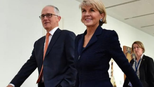 Julie Bishop's seat in Curtin, WA was considered 'safe', giving her room to pursue her Cabinet position and eventually the top job. Source: AFP