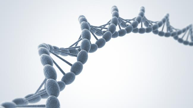 In 2012, a major international effort yielded the first comprehensive look at how DNA works, offering new insight into the biology of disease.