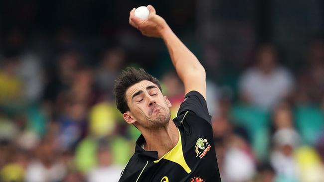 Mitch Starc was a standout in Australia's Twenty20 clean sweep of Sri Lanka.