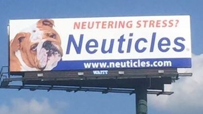 Today, Mr Miller is a millionaire — but Neuticles was not an overnight success. Picture: Facebook
