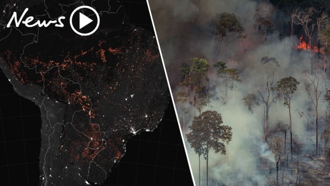Amazon Forest: World watches wildfires lash through 'lungs of the earth'