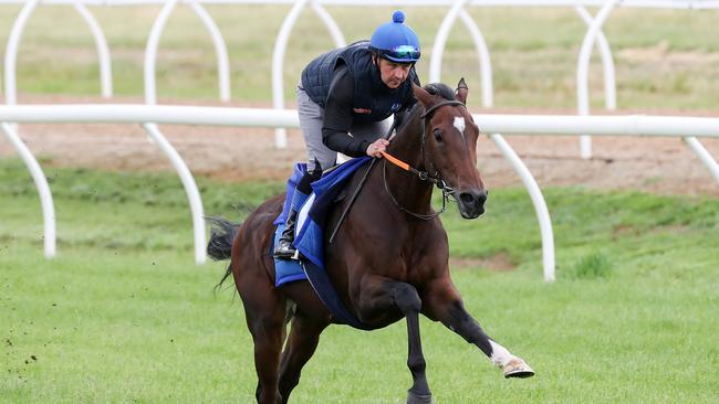 Danceteria has jockey Jamie Spencer excited for the Cox Plate. Picture: George Salpigtidis