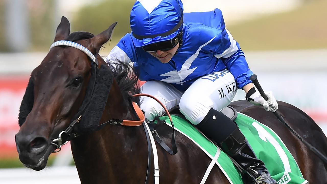 Rosehill Races Tips Matt Jones Preview Shayne OCass Best Bets Free Horse Racing