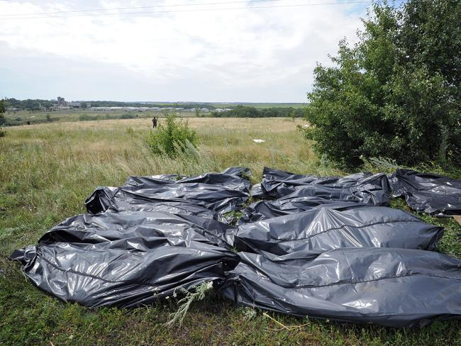 'Very difficult to look at' ... bodies of victims wrapped in bags wait to be collected at the site of the crash of a Malaysia Airlines plane carrying 298 people from Amsterdam to Kuala Lumpur. Picture: Dominique Faget