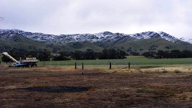 Snow on Mt Bryan in the nid-north at 9.30am on October 11, 2012. Picture: David Kempster