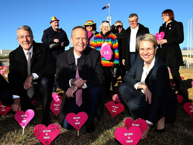 Labor MP Mark Dreyfus, Opposition Leader Bill Shorten and Deputy Opposition Leader Tanya Plibersek with Labor colleagues attend the first 'Sea of Hearts' event in front of Parliament House in support of marriage equality. Picture Kym Smith