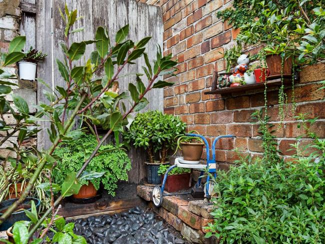 The couple have made the most of their small amount of outdoor space at 68 Renwick St, Redfern
