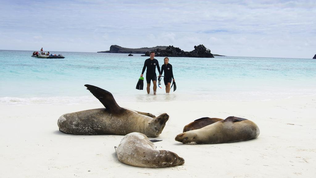 all you need to know about the galapagos islands top attractions