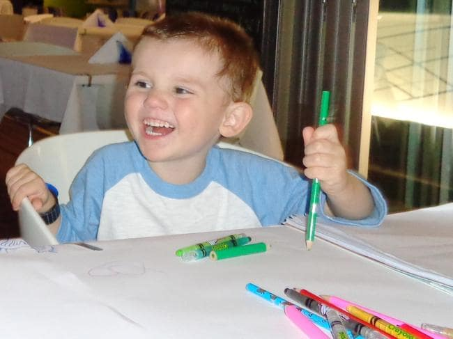 William Tyrrell would turn nine years old in June if he is still alive.