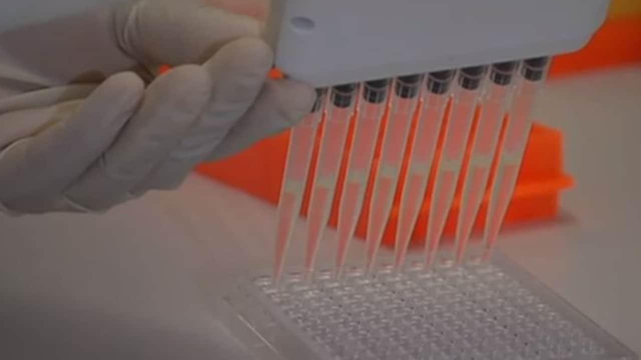 'Cure' found for coronavirus in Australia