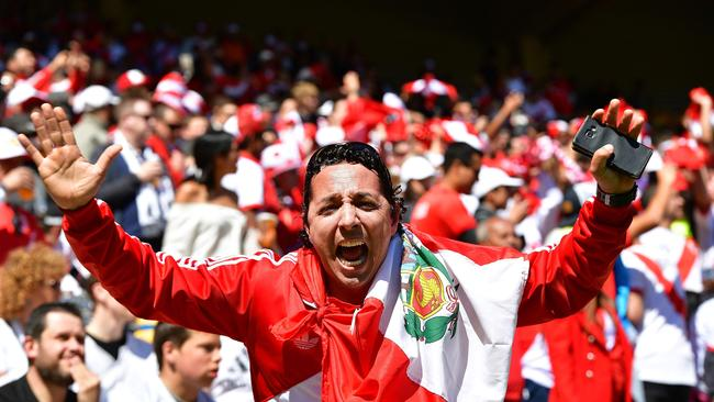 Fans chant during the World Cup qualifying match between New Zealand and Peru at Westpac Stadium.