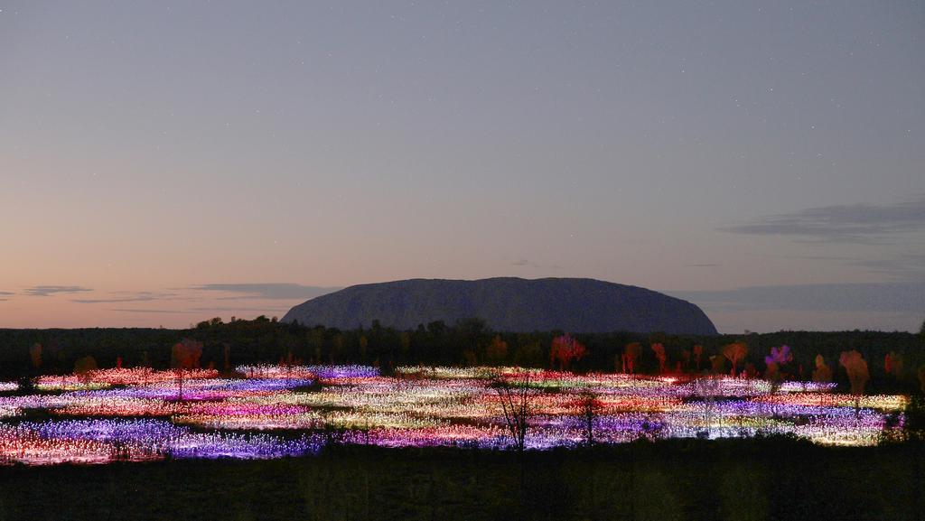 Uluru Field Of Light By Bruce Munro Escape