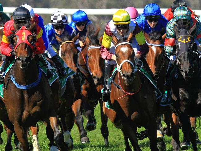 Thoroughbred action heads to Wellington and Tuncurry on Monday.