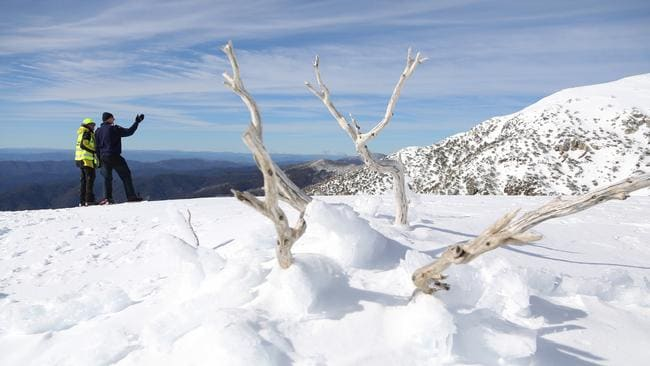 The search on Mt Bogong.