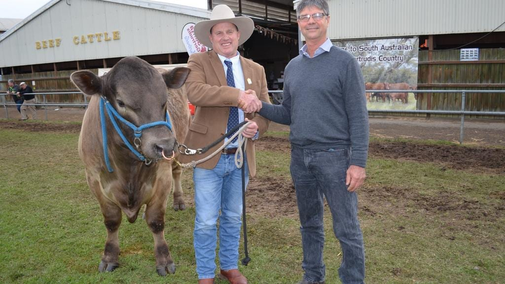 Sa beef farmers new industry blueprint underway with help of new beef industry blueprint chair bruce creek with allan piggott malvernweather Image collections