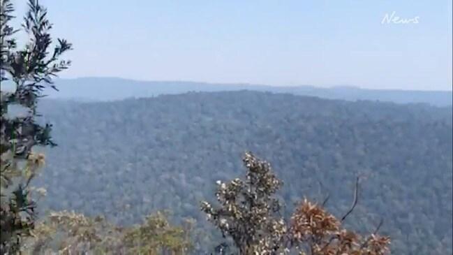 WALK THROUGH: Bushfires destroy Binna Burra Lodge