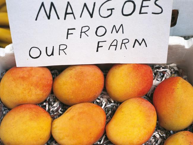 The region's fresh produce is the envy of the rest of Australia. Picture: Jenny Hewett