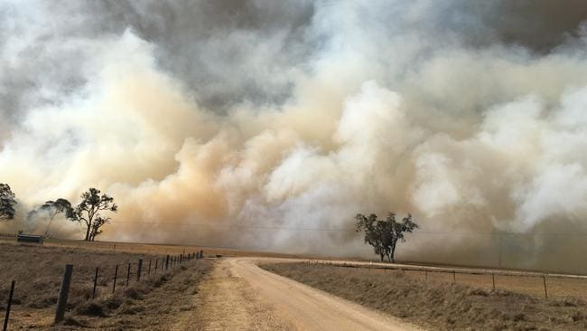 A bushfire burning near the township of Tenterfield in northern NSW. Picture: AAP Image/Supplied by Bronwyn Petrie.
